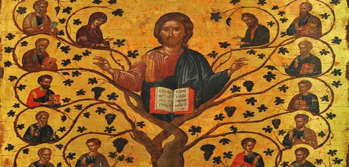 Credit Foto: Yesus,Pokok Anggur yang Benar, www.hidupkatolik.com
