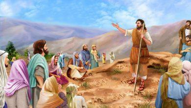 08 Desember, Bacaan, bacaan kitab suci hari ini, Injil hari ini, katekese, katolik, Komsos KWI, Konferensi Waligereja Indonesia, KWI, penyejuk iman, refleksi harian, Renungan hari minggu, renungan harian, renungan harian katolik, sabda tuhan, ziarah batin, adven, masa adven, korona adven, adven II