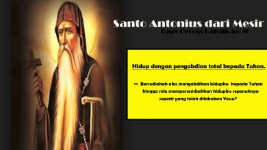17 Januari, Santo Antonius dari Mesir, Santo Paus Marcellus I, katekese, katolik, Komsos KWI, Konferensi Waligereja Indonesia, KWI, Para Kudus di Surga, putera allah, santo santa, Sukacita, teladan kita