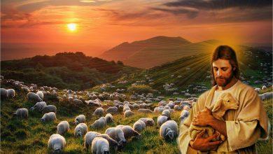 02 Mei, Injil Hari ini, Bacaan, Bacaan Kitab Suci, bait allah, Firman Tuhan, iman, Injil Katolik, Bacaan Injil Hari ini, Kitab Suci, Komsos KWI, Konferensi Waligereja Indonesia, KWI, penyejuk iman, Perjanjian Lama, Pewartaan, Sabda Tuhan, Ulasan eksegetis, Ulasan Kitab Suci Harian, Yesus Juruselamat, Pekan Suci, Minggu Paskah, Hari Minggu Paskah IV, Doa Rosario Laudato Si, Rosario, Mei Bulan Rosario