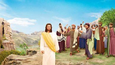 31 Agustus 2020, Bacaan, Bacaan 24 Agustus 2020, Bacaan Injil 31 Agustus 2020, Hari Minggu Biasa XXII,