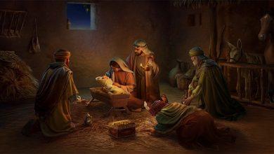 29 Desember, Bacaan, bacaan kitab suci hari ini, Injil hari ini, Komsos KWI, Konferensi Waligereja Indonesia, KWI, misa natal, natal, penyejuk iman, refleksi harian, Renungan hari minggu, renungan harian, renungan harian katolik, sabda tuhan, ziarah batin