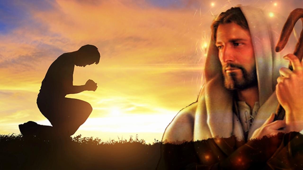 26 Juli 2020, Bacaan, Bacaan Kitab Suci, Bacaan Injil Harian, Renungan Katolik Harian, Bait Allah, Firman Tuhan, Iman Katolik, Injil Katolik, Kitab Suci, Komsos KWI, Konferensi Waligereja Indonesia, KWI, penyejuk iman, Perjanjian Lama, Perjanjian Baru, Pewartaan, Sabda Tuhan, Bait Pengantar Injil, Ulasan Eksegetis, Ulasan Kitab Suci Harian, Yesus Juruselamat, Bacaan Kitab Suci, Katekese, Mazmur Tanggapan 26 Juli 2020, Renungan Harian Katolik 26 Juli 2020, Bacaan 26 Juli 2020, bacaan Pertama 26 Juli 2020, Bacaan Injil 26 Juli 2020, Hari Minggu Biasa XVII, Ulasan Eksegetis Bacaan Kitab Suci Minggu XVII, Minggu Biasa XVII, Rabu Minggu Biasa XVII, Gereja Katolik Indonesia, Katolik, Katekese, Umat Katolik, Lawan Covid 19 Bahan Pangan, Berbagi Anak Bangsa, Berkebun, berkebun dirumah, Caritas Atambua, Caritas Indonesia, Covid – 19, dirumah aja, Gerakan Solidaritas, gereja Katolik Indonesia, Hari pangan Sedunia, hasil bumi, Indonesia, Jaga jarak, katekese, katolik, keuskupan tanjungselor, Komsos KWI, Konferensi Waligereja Indonesia, Lawan Covid-19, Masyarakat Mandiri, pangan lokal, pewartaan, Saling Peduli, stay at home, tanaman