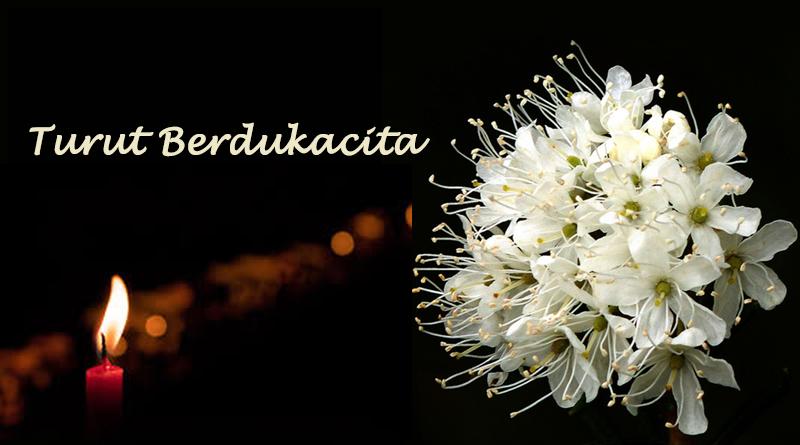 26 Maret, Angelus, Bapa Kami, bapa suci, Bunda Maria, coronavirus pandemic, doa Angelus, Doa bersama, gereja katolik, Hari Raya Kabar Sukacita, Ignatius Kardinal Suharyo, katekese, komunitas Kristiani, Kristus yang bangkit, Paus Fransiskus, pope francis, Umat Kristiani